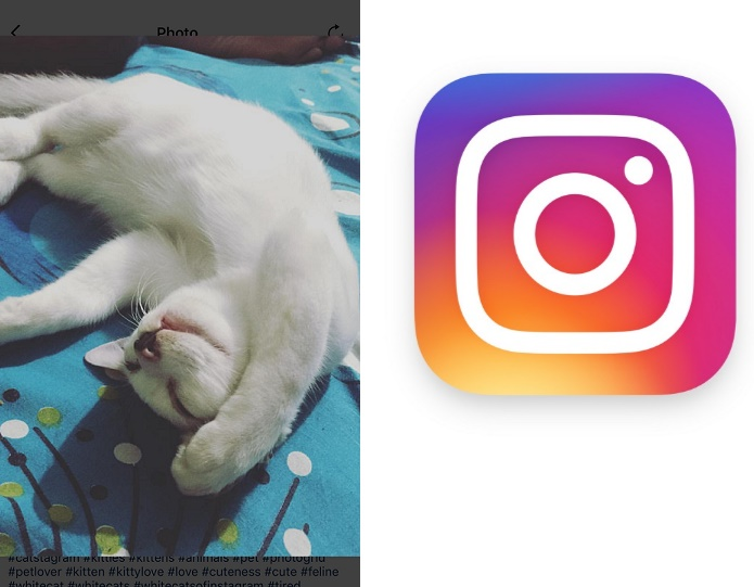 Instagram adds photo zoom feature in the iOS app