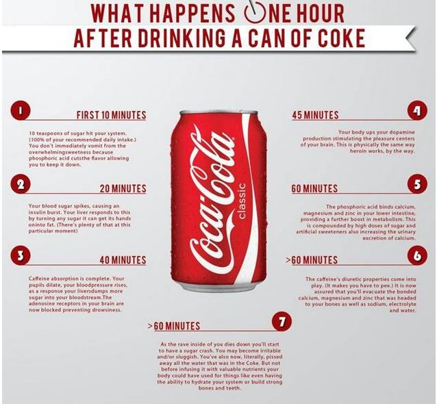What happens inside your body when you take a sip of Coke
