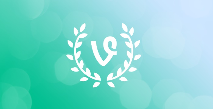 How to save your Vine videos for eternity