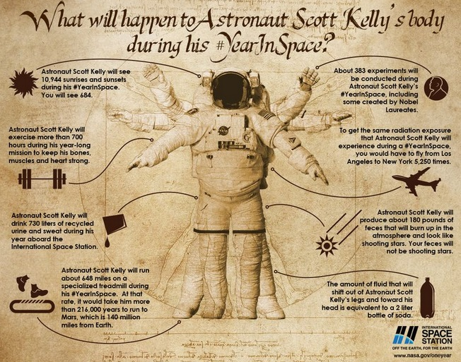 What will happen to the body of astronaut Scott Kelly during his year in Space
