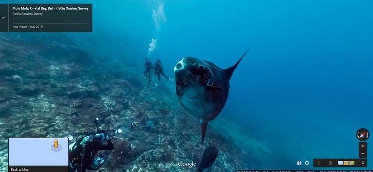 Google Maps Street View now goes deep underwater