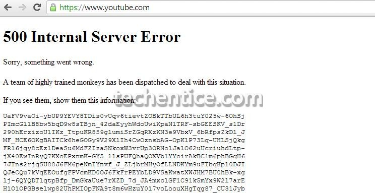 Highly trained monkeys have just fixed youtube error