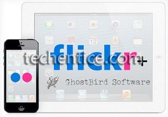 Flickr Ghostbird