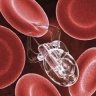DARPA plans Nanobots for fast healing of injuries
