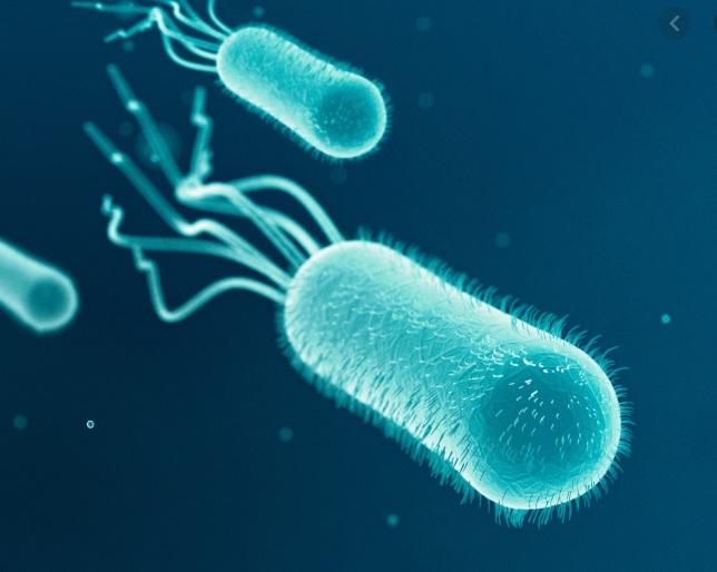 Artificial Intelligence Discovers Medicine That Kills Antibiotic Resistant Bacteria